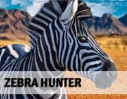 Zebra Hunter